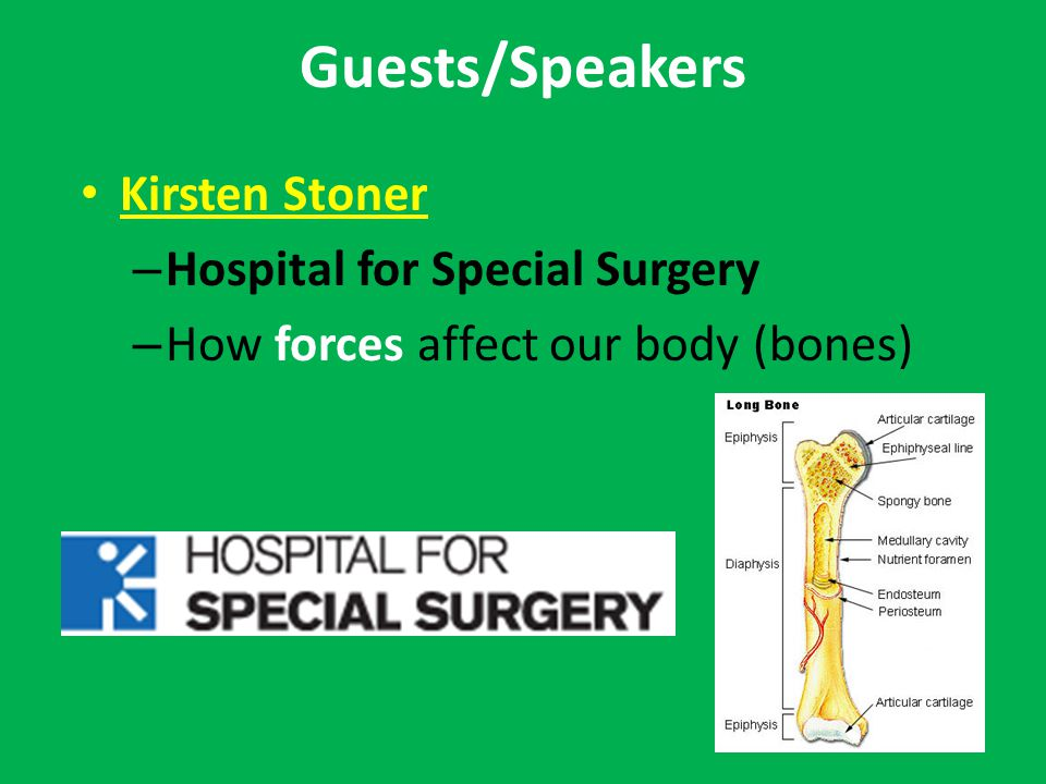 Guests/Speakers Kirsten Stoner – Hospital for Special Surgery – How forces affect our body (bones)