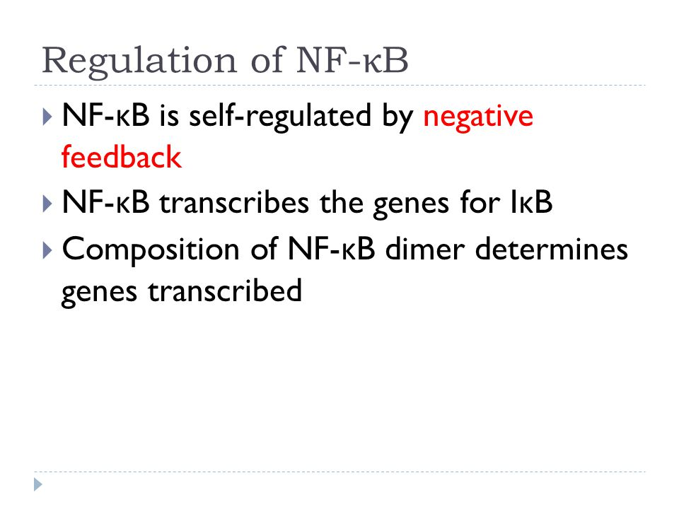 Regulation of NF- κ B  NF- κ B is self-regulated by negative feedback  NF- κ B transcribes the genes for I κ B  Composition of NF- κ B dimer determines genes transcribed