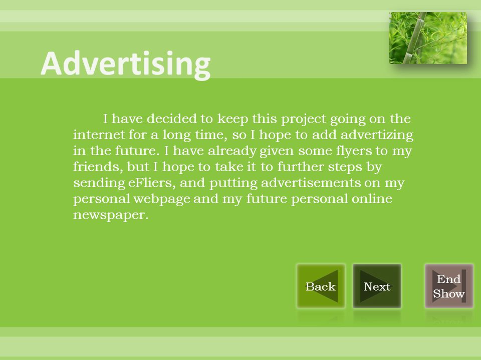 I have decided to keep this project going on the internet for a long time, so I hope to add advertizing in the future.