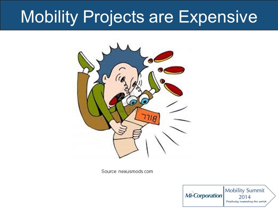 © Mi-Co, 2012 Mobility Projects are Expensive Source: nexusmods.com