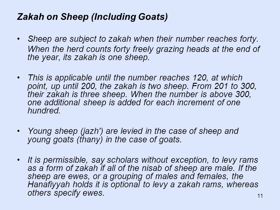 11 Zakah on Sheep (Including Goats) Sheep are subject to zakah when their number reaches forty.