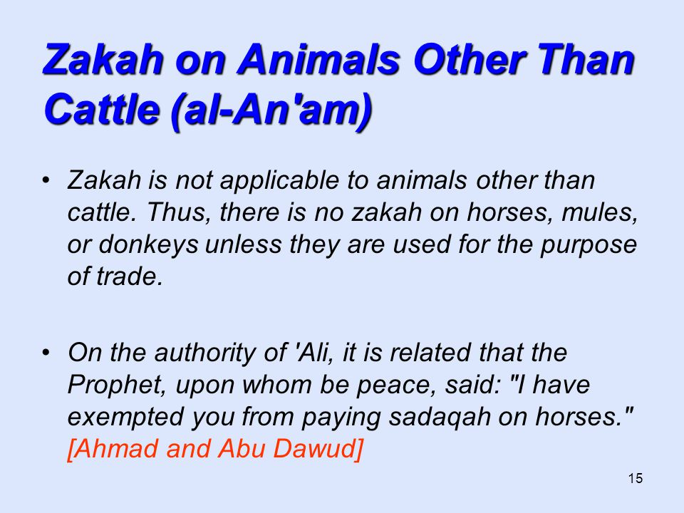 15 Zakah on Animals Other Than Cattle (al-An am) Zakah is not applicable to animals other than cattle.