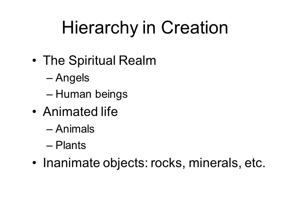 Hierarchy in Creation The Spiritual Realm –Angels –Human beings Animated life –Animals –Plants Inanimate objects: rocks, minerals, etc.
