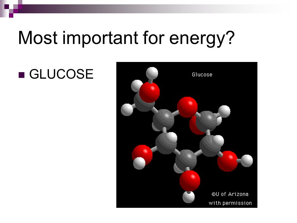 Most important for energy GLUCOSE