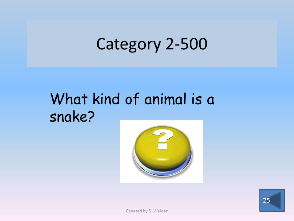 Category 2-500 25 What kind of animal is a snake Created by S. Weider