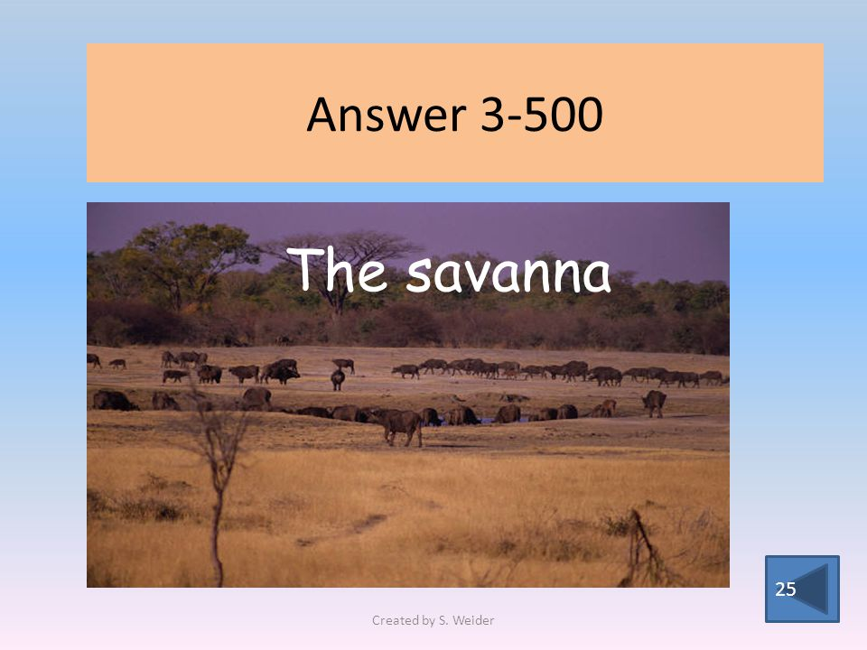 Answer 3-500 25 The savanna Created by S. Weider