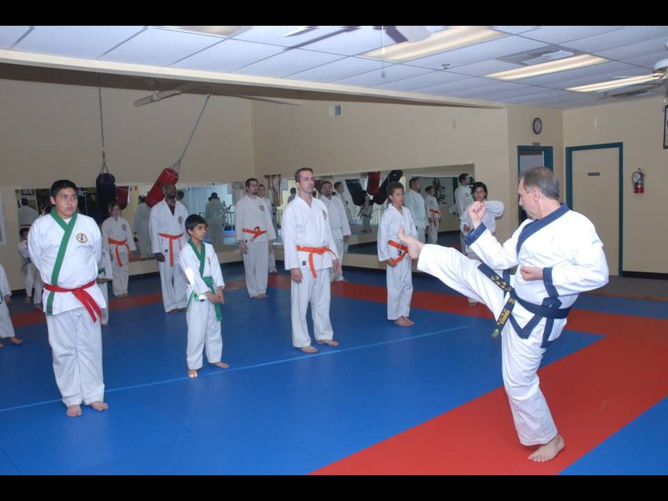Adult class – demonstrating front kick