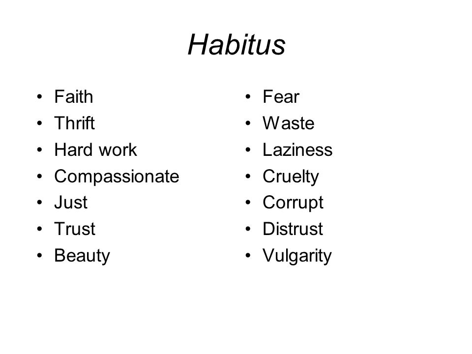 Habitus Faith Thrift Hard work Compassionate Just Trust Beauty Fear Waste Laziness Cruelty Corrupt Distrust Vulgarity