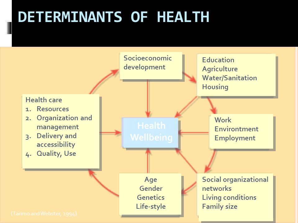 DETERMINANTS OF HEALTH (Tarimo and Webster, 1994) Health care 1.Resources 2.Organization and management 3.Delivery and accessibility 4.Quality, Use Health care 1.Resources 2.Organization and management 3.Delivery and accessibility 4.Quality, Use Age Gender Genetics Life-style Age Gender Genetics Life-style Social organizational networks Living conditions Family size Social organizational networks Living conditions Family size Work Environtment Employment Work Environtment Employment Education Agriculture Water/Sanitation Housing Education Agriculture Water/Sanitation Housing Socioeconomic development Health Wellbeing Health Wellbeing
