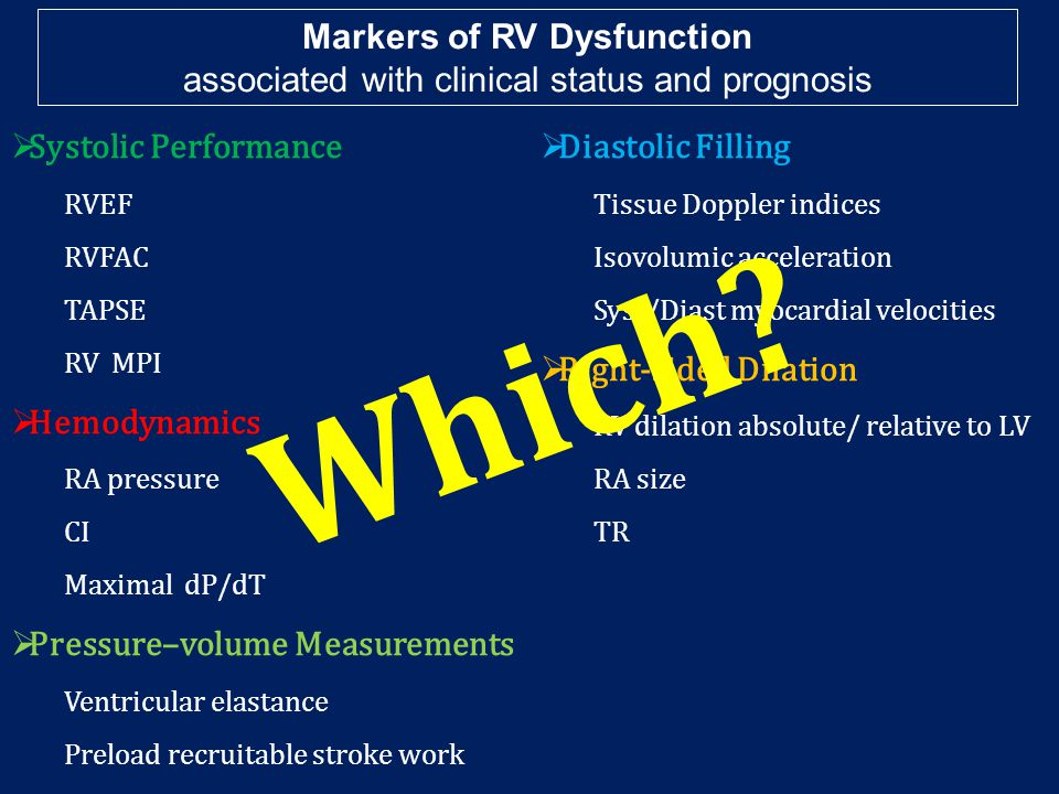 Markers of RV Dysfunction associated with clinical status and prognosis  Systolic Performance RVEF RVFAC TAPSE RV MPI  Hemodynamics RA pressure CI Maximal dP/dT  Pressure–volume Measurements Ventricular elastance Preload recruitable stroke work  Diastolic Filling Tissue Doppler indices Isovolumic acceleration Syst/Diast myocardial velocities  Right-sided Dilation RV dilation absolute/ relative to LV RA size TR W h i c h