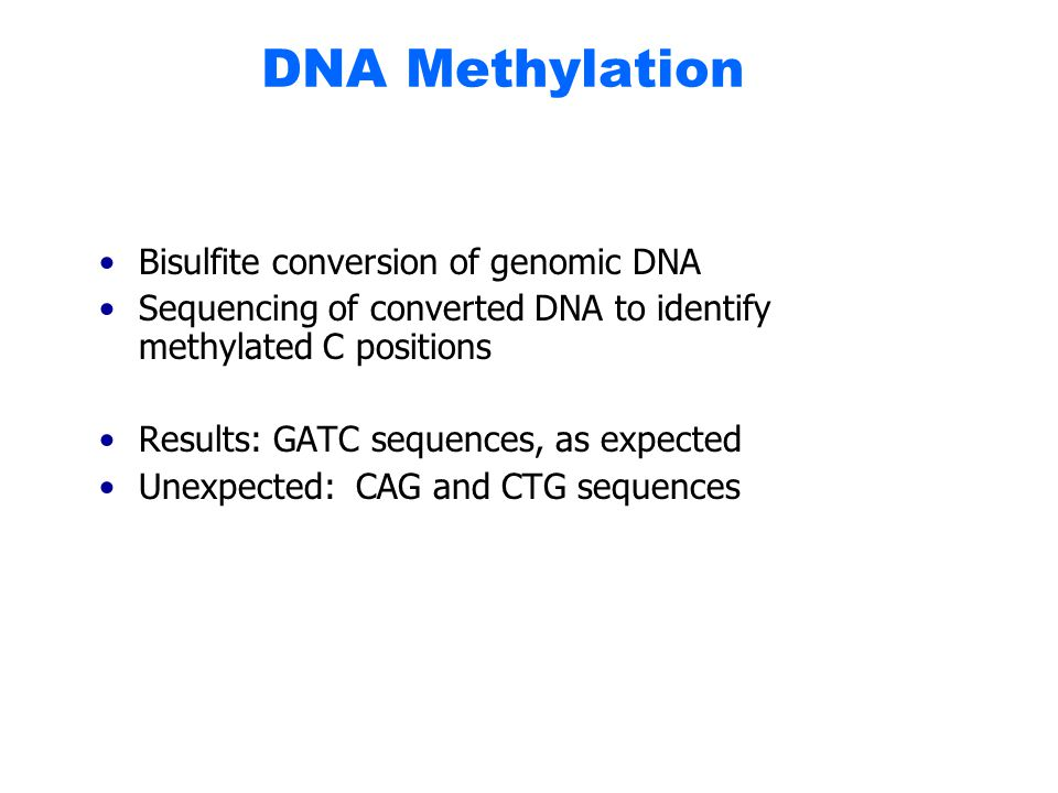 DNA Methylation Bisulfite conversion of genomic DNA Sequencing of converted DNA to identify methylated C positions Results: GATC sequences, as expected Unexpected: CAG and CTG sequences