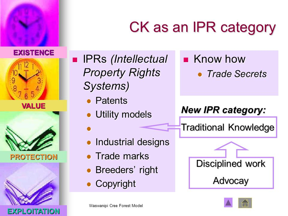 EXISTENCE VALUE PROTECTION EXPLOITATION Waswanipi Cree Forest Model CK as an IPR category IPRs (Intellectual Property Rights Systems) IPRs (Intellectual Property Rights Systems) Patents Patents Utility models Utility models Industrial designs Industrial designs Trade marks Trade marks Breeders' right Breeders' right Copyright Copyright Know how Know how Trade Secrets Trade Secrets New IPR category: Traditional Knowledge Disciplined work Advocay