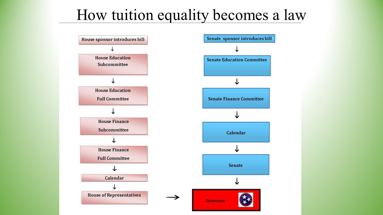 How tuition equality becomes a law