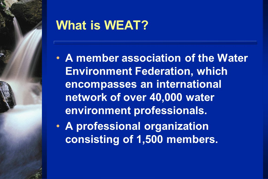 What is WEAT.