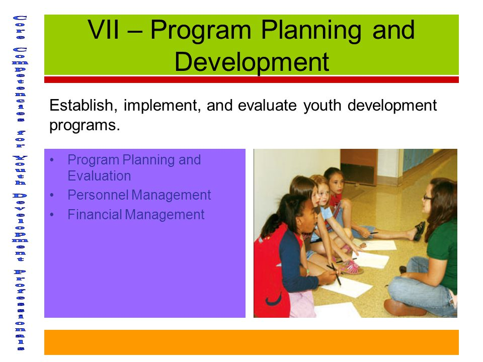 VII – Program Planning and Development Program Planning and Evaluation Personnel Management Financial Management Establish, implement, and evaluate youth development programs.