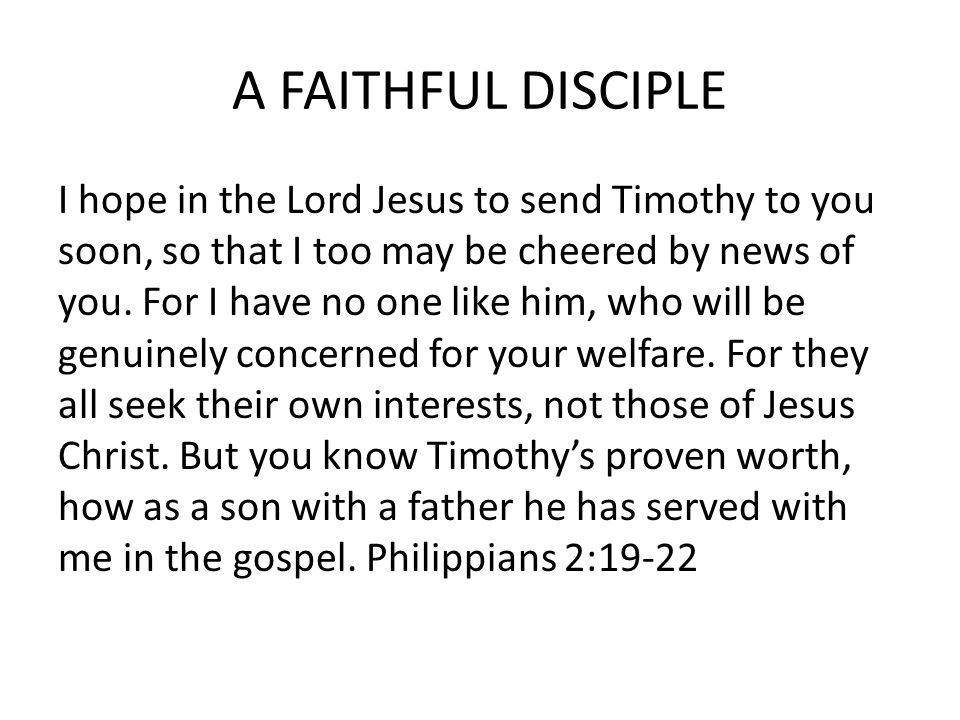 A FAITHFUL DISCIPLE I hope in the Lord Jesus to send Timothy to you soon, so that I too may be cheered by news of you.
