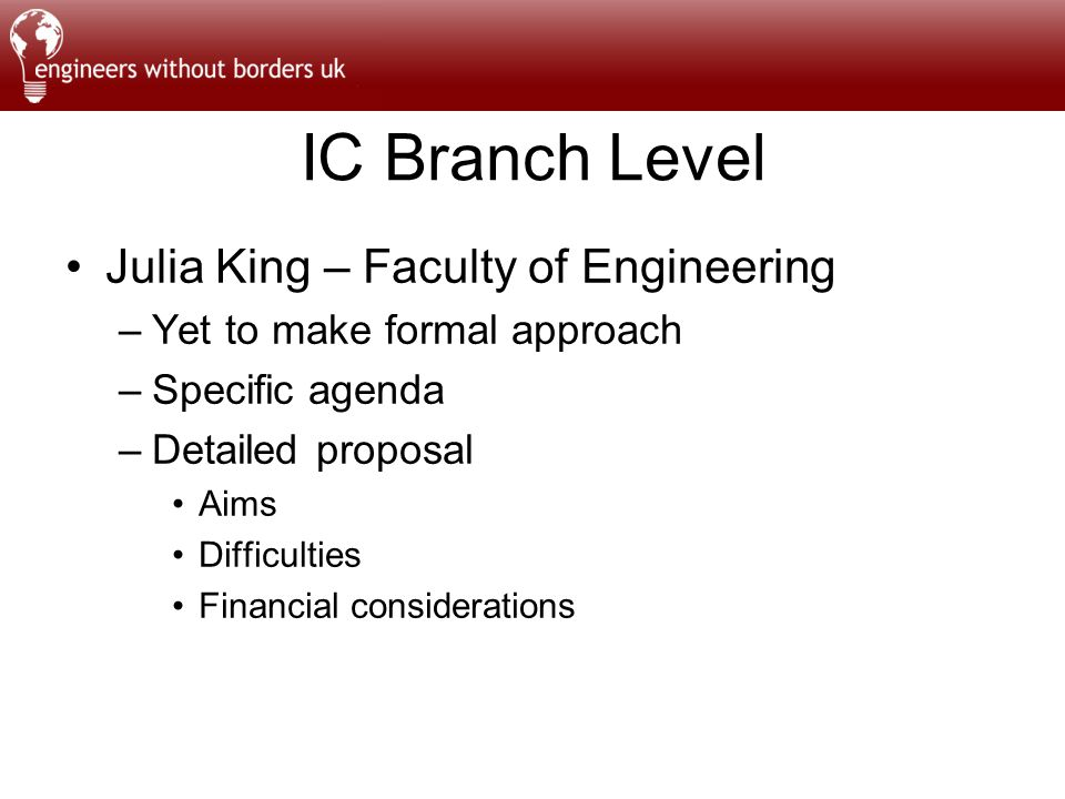 IC Branch Level Julia King – Faculty of Engineering –Yet to make formal approach –Specific agenda –Detailed proposal Aims Difficulties Financial considerations