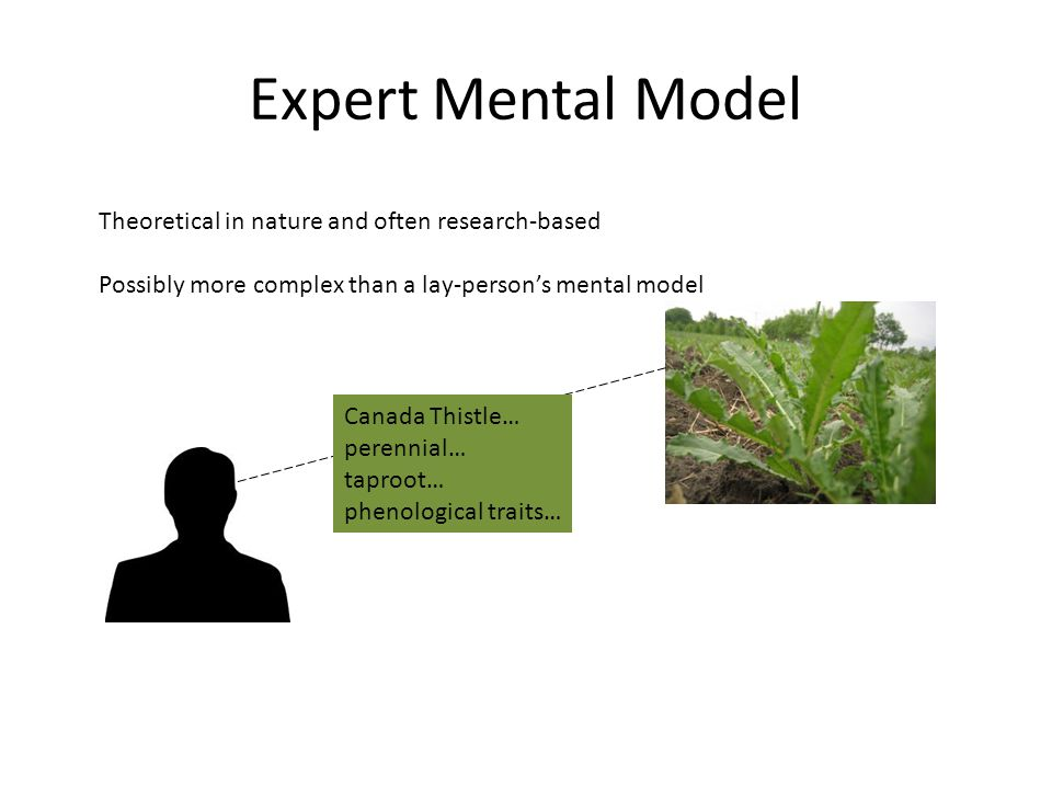 Theoretical in nature and often research-based Possibly more complex than a lay-person's mental model Expert Mental Model Canada Thistle… perennial… taproot… phenological traits…