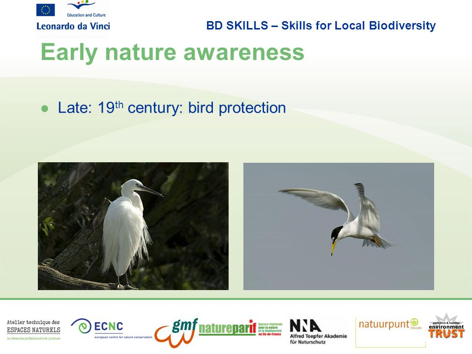 BD SKILLS – Skills for Local Biodiversity Early nature awareness l Late: 19 th century: bird protection