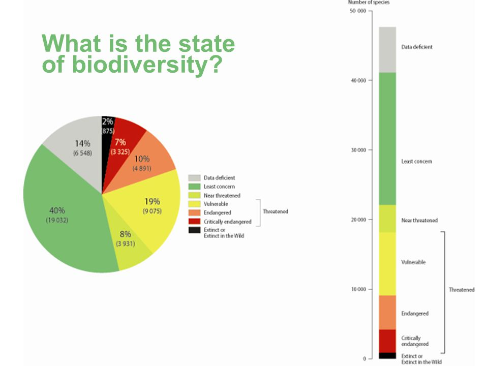 BD SKILLS – Skills for Local Biodiversity What is the state of biodiversity