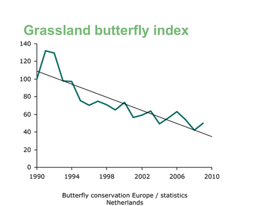 BD SKILLS – Skills for Local Biodiversity Grassland butterfly index