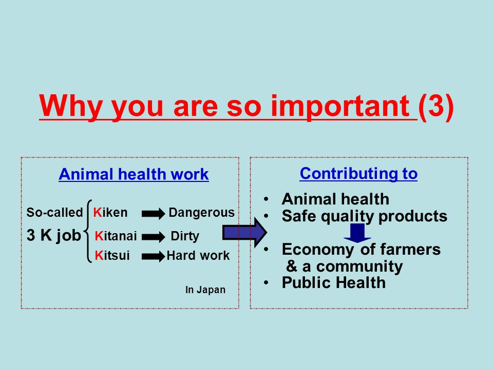 Why you are so important (3) Animal health work So-called Kiken Dangerous 3 K job Kitanai Dirty Kitsui Hard work Contributing to Animal health Safe quality products Economy of farmers & a community Public Health In Japan