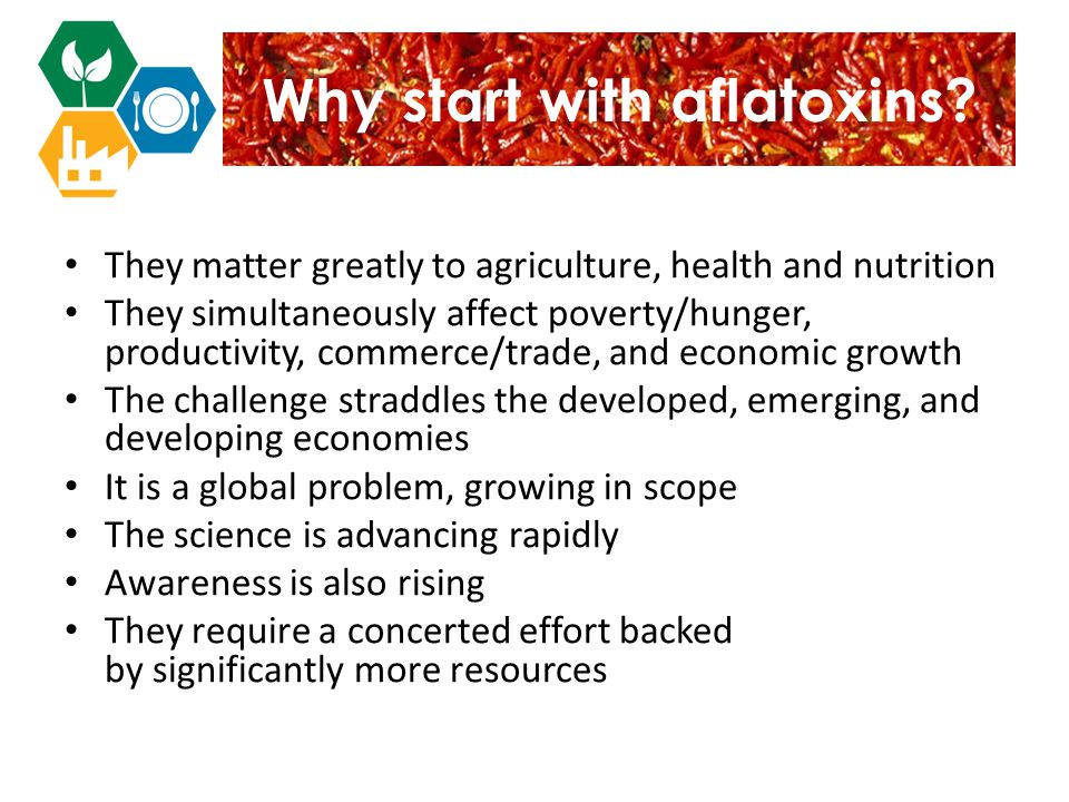 Why start with aflatoxins.