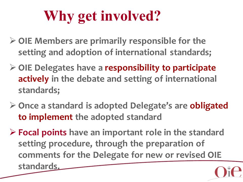  OIE Members are primarily responsible for the setting and adoption of international standards;  OIE Delegates have a responsibility to participate actively in the debate and setting of international standards;  Once a standard is adopted Delegate's are obligated to implement the adopted standard  Focal points have an important role in the standard setting procedure, through the preparation of comments for the Delegate for new or revised OIE standards.
