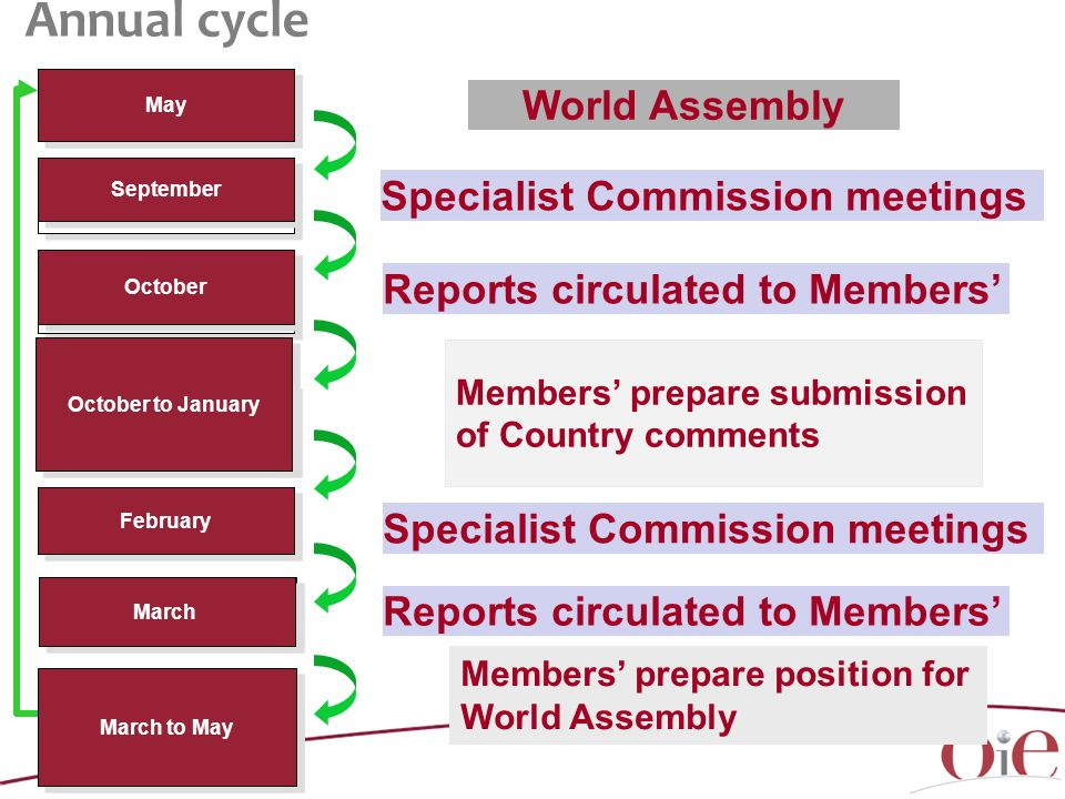 May September February March Reports circulated to Members' March to May October October to January Members' prepare submission of Country comments Members' prepare position for World Assembly Specialist Commission meetings World Assembly Specialist Commission meetings Reports circulated to Members' Annual cycle