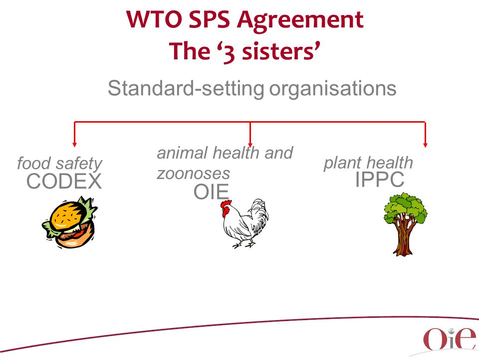 WTO SPS Agreement The '3 sisters' Standard-setting organisations food safety CODEX plant health IPPC animal health and zoonoses OIE