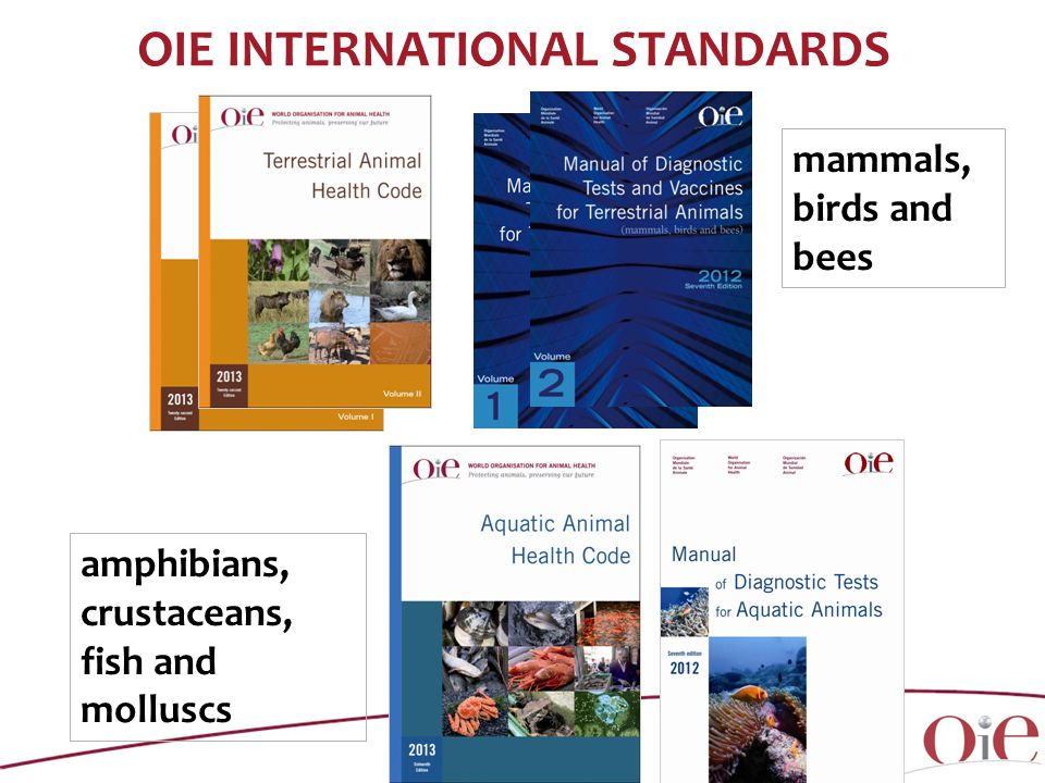 OIE INTERNATIONAL STANDARDS mammals, birds and bees amphibians, crustaceans, fish and molluscs