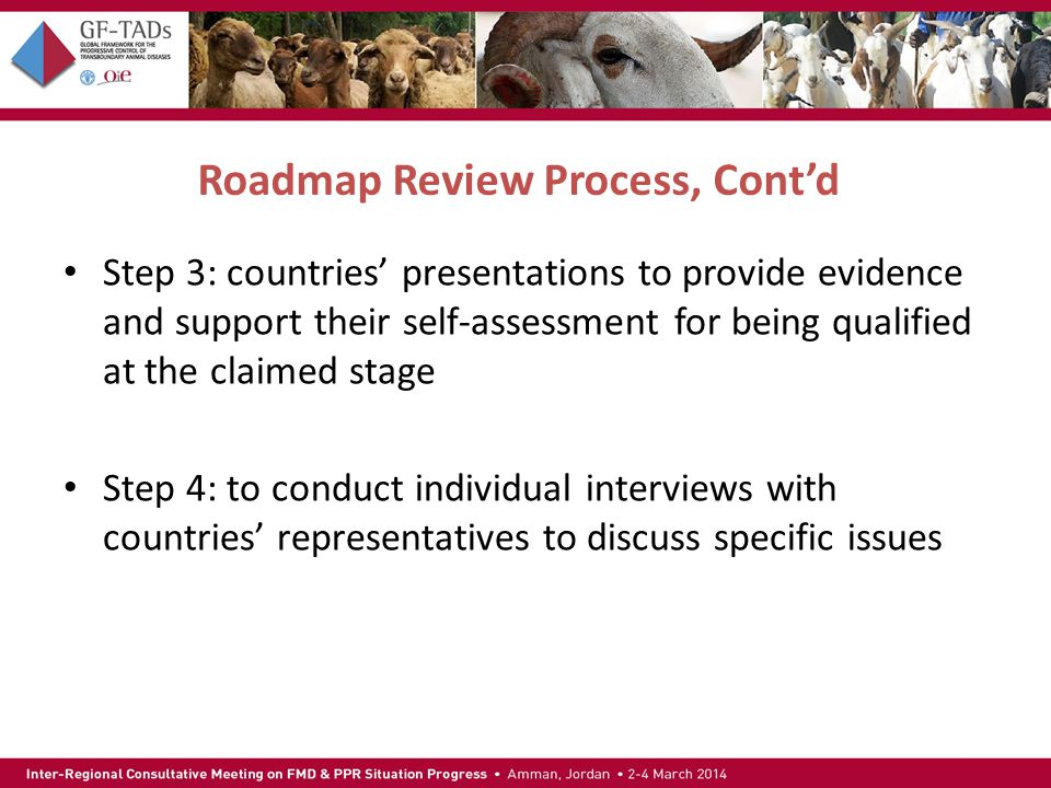 Roadmap Review Process, Cont'd Step 3: countries' presentations to provide evidence and support their self-assessment for being qualified at the claimed stage Step 4: to conduct individual interviews with countries' representatives to discuss specific issues