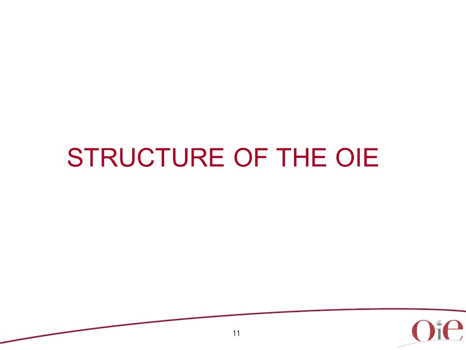11 STRUCTURE OF THE OIE