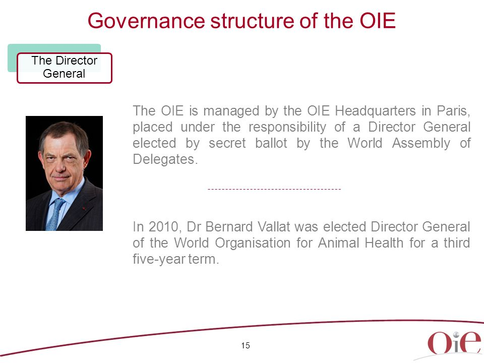Governance structure of the OIE 15 The Director General The OIE is managed by the OIE Headquarters in Paris, placed under the responsibility of a Director General elected by secret ballot by the World Assembly of Delegates.