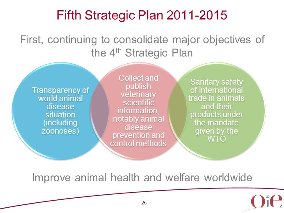 25 Fifth Strategic Plan 2011-2015 First, continuing to consolidate major objectives of the 4 th Strategic Plan Transparency of world animal disease situation (including zoonoses) Collect and publish veterinary scientific information, notably animal disease prevention and control methods Sanitary safety of international trade in animals and their products under the mandate given by the WTO Improve animal health and welfare worldwide