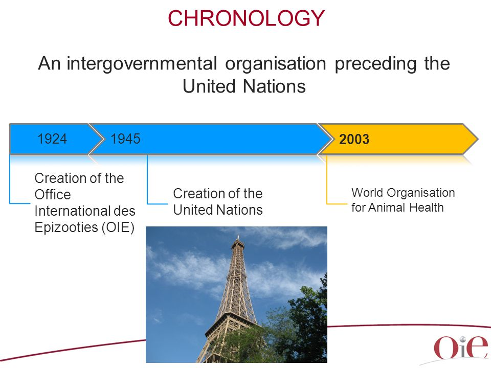 CHRONOLOGY An intergovernmental organisation preceding the United Nations 4 Creation of the Office International des Epizooties (OIE) World Organisation for Animal Health Creation of the United Nations