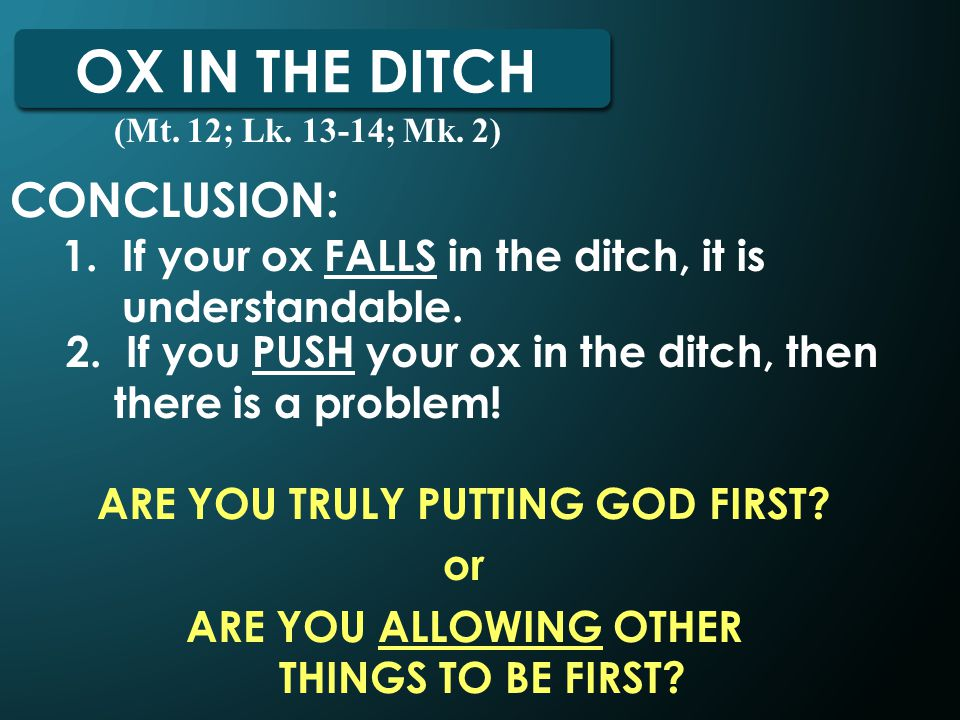 OX IN THE DITCH CONCLUSION: 1. If your ox FALLS in the ditch, it is understandable.