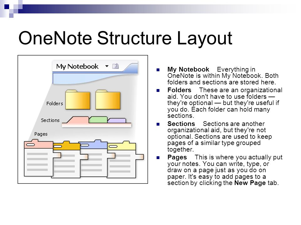 OneNote Structure Layout My Notebook Everything in OneNote is within My Notebook.