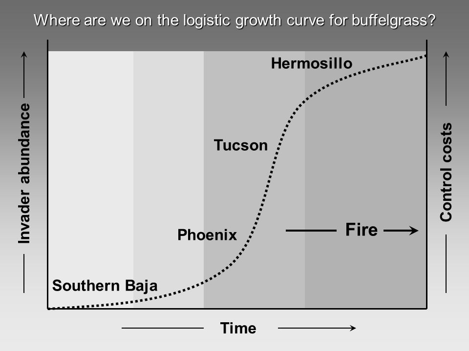 Invader abundance Time Fire Control costs Phoenix Tucson Hermosillo Southern Baja Where are we on the logistic growth curve for buffelgrass