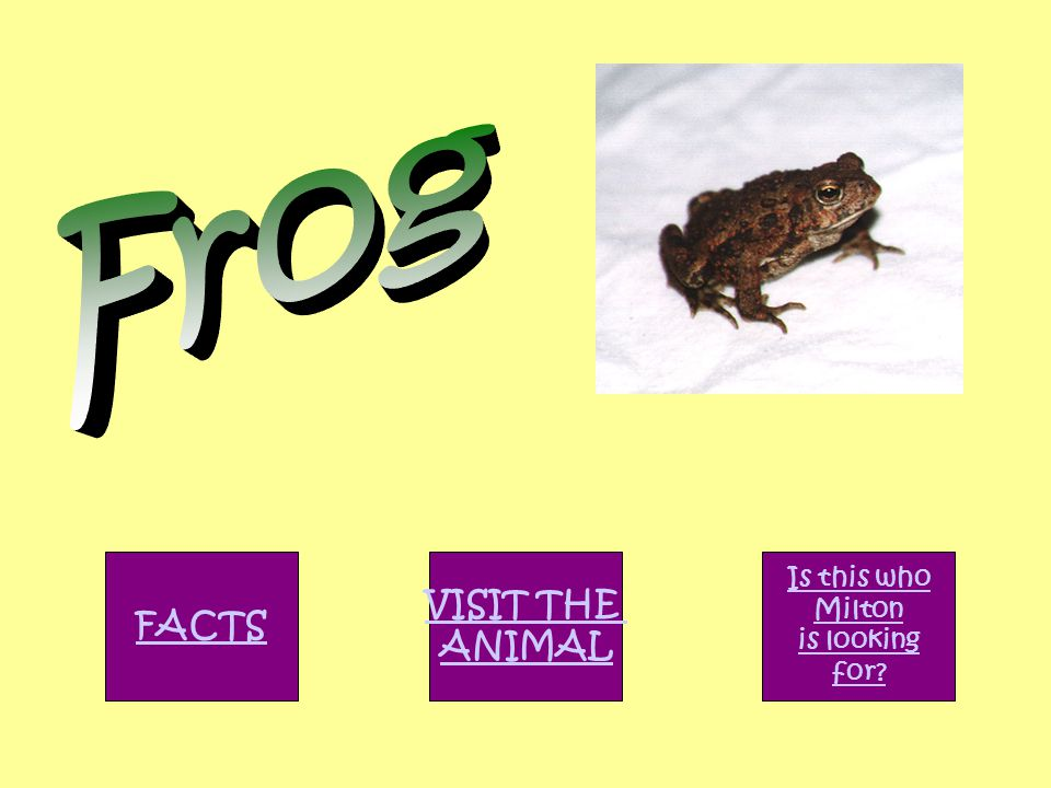FACTS VISIT THE ANIMAL Is this who Milton is looking for