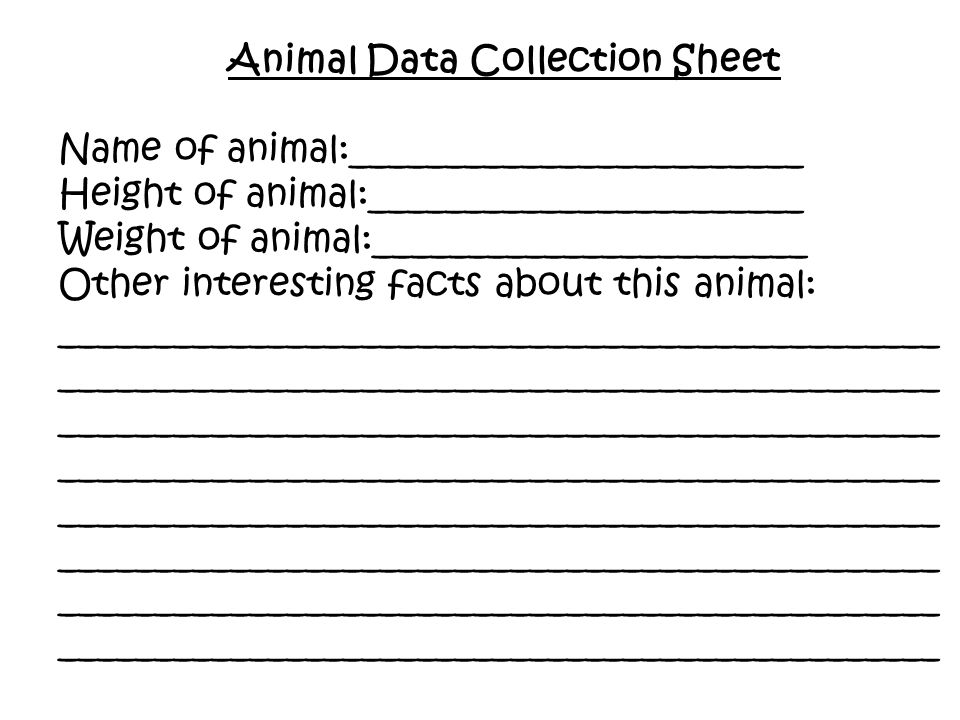Animal Data Collection Sheet Name of animal:________________________ Height of animal:_______________________ Weight of animal:_______________________ Other interesting facts about this animal: _______________________________________________ _______________________________________________ _______________________________________________ _______________________________________________