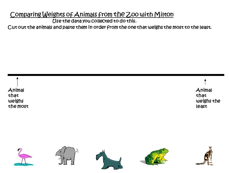 Comparing Weights of Animals from the Zoo with Milton Animal that weighs the most Cut out the animals and paste them in order from the one that weighs the most to the least.