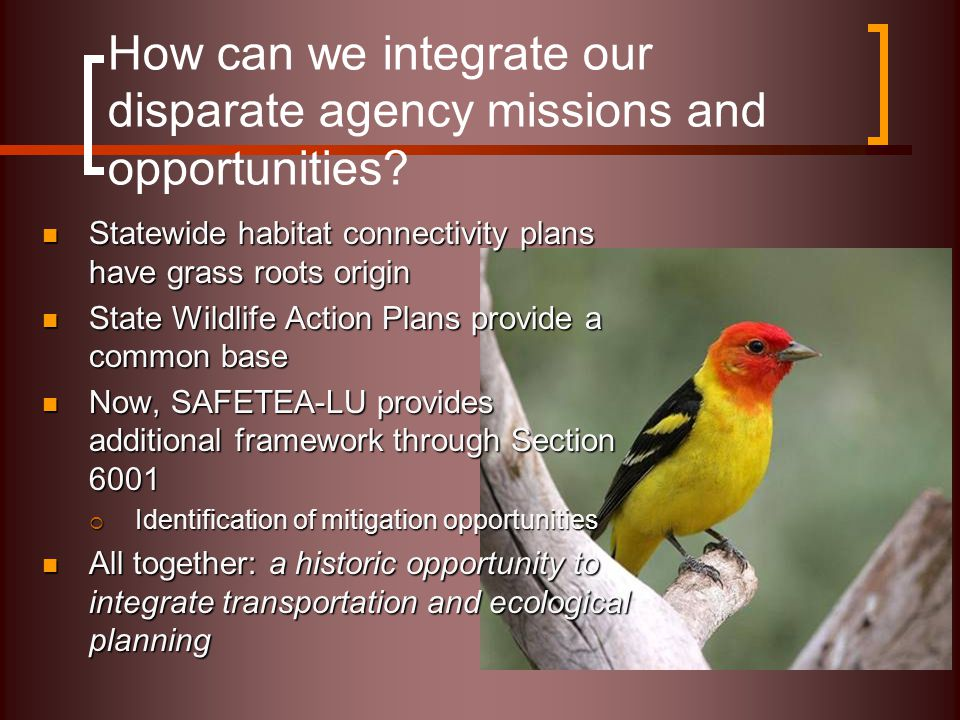 How can we integrate our disparate agency missions and opportunities.