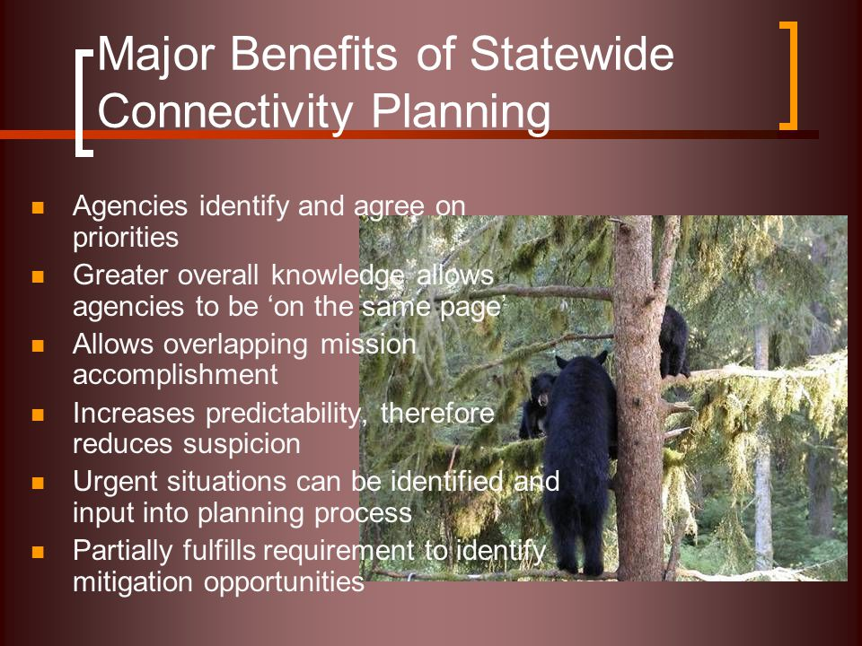 Major Benefits of Statewide Connectivity Planning Agencies identify and agree on priorities Greater overall knowledge allows agencies to be 'on the same page' Allows overlapping mission accomplishment Increases predictability, therefore reduces suspicion Urgent situations can be identified and input into planning process Partially fulfills requirement to identify mitigation opportunities