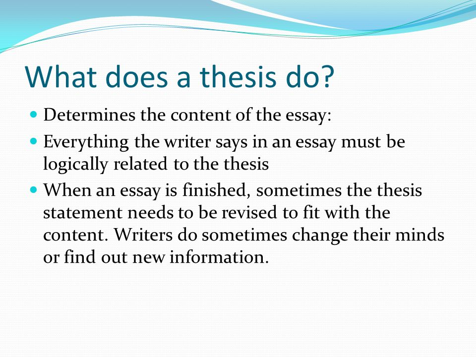What does a thesis do.