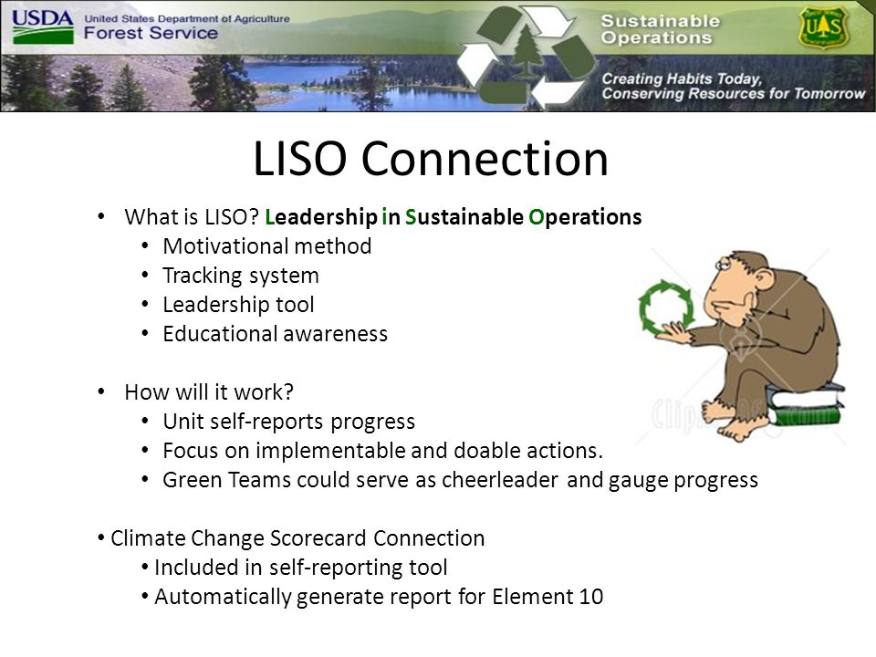 LISO Connection What is LISO.