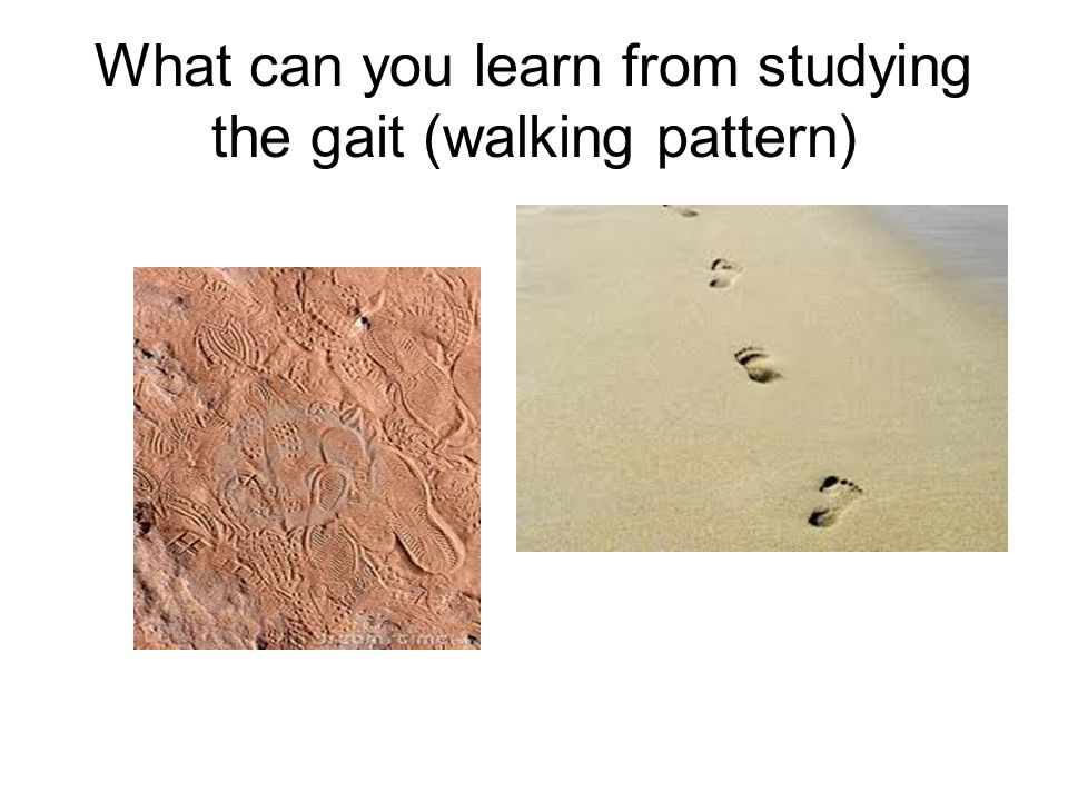 What can you learn from studying the gait (walking pattern)