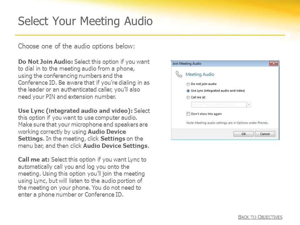 Select Your Meeting Audio Choose one of the audio options below: Do Not Join Audio: Select this option if you want to dial in to the meeting audio from a phone, using the conferencing numbers and the Conference ID.