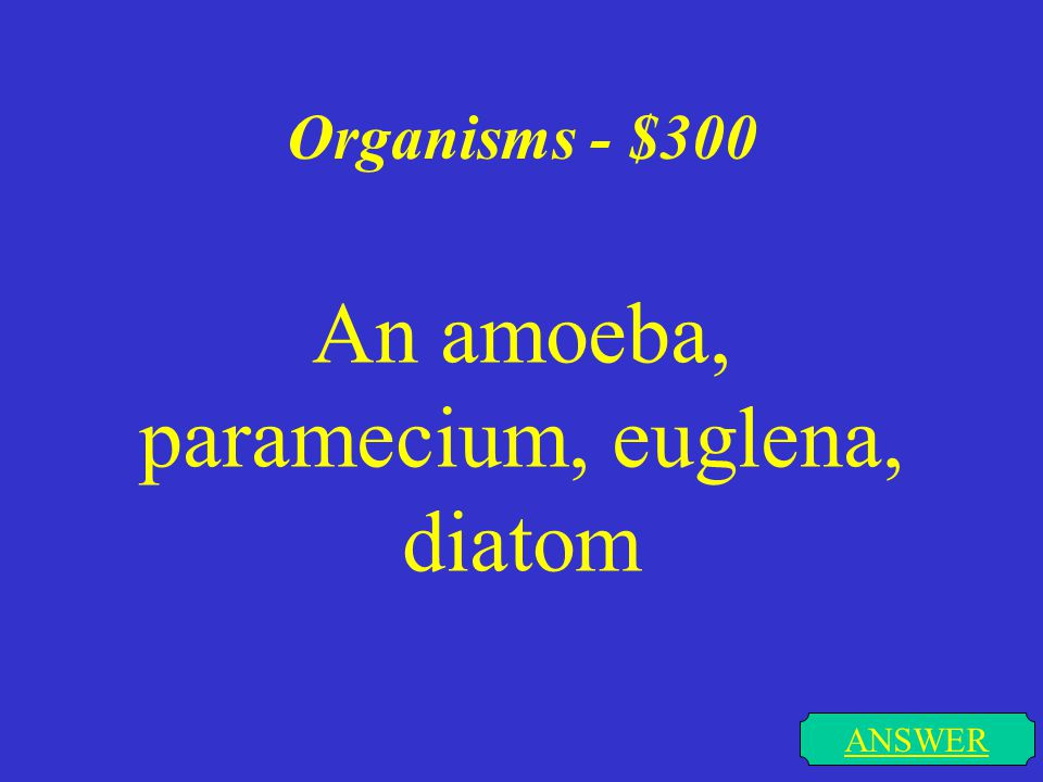Organisms - $200 ANSWER The belief that all organisms are made of cells that divide & perform functions for survival.