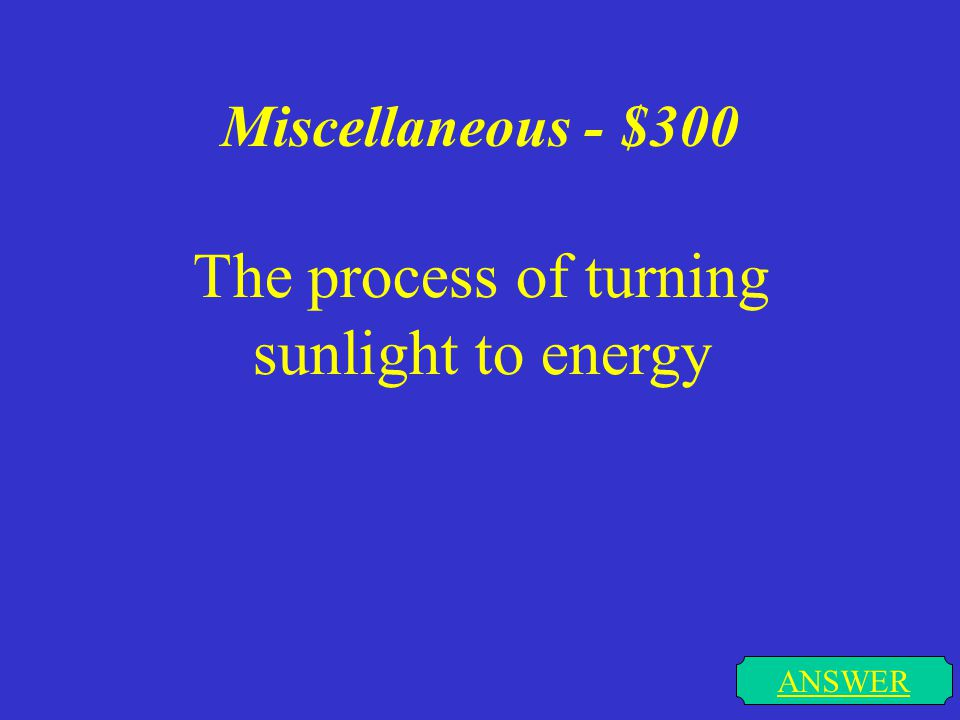 Miscellaneous - $200 I surround the cell & the nucleus. I allow things to pass in & out. ANSWER